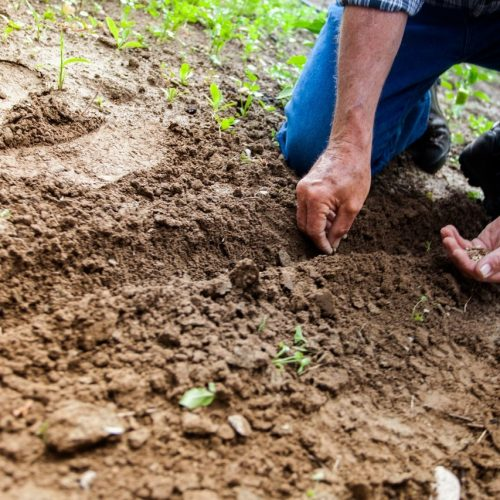 Met werkschoenen ben je voorbereid om je tuin lente-klaar te maken