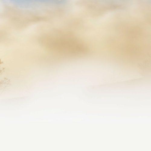 Mistgenerator – Innovatief een huis beveiligen